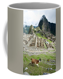 High Angle View Of Llama Lama Glama Coffee Mug