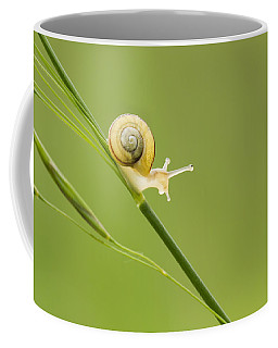 High Speed Snail Coffee Mug