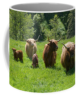 Highland Cows With Calves Coffee Mug