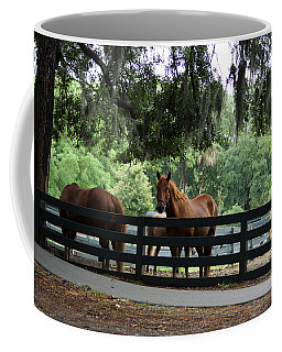 Hilton Head Island Beauty Coffee Mug