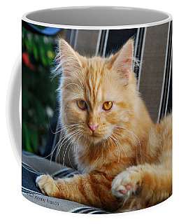 Coffee Mug featuring the photograph His Royal Highness by Kenny Francis