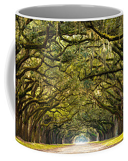 Historic Wormsloe Plantation Oak Trees Coffee Mug