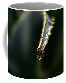 Coffee Mug featuring the photograph Hold On by Nadalyn Larsen
