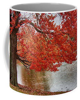 Coffee Mug featuring the photograph Holding Our Bright Red Joy by Jeff Folger