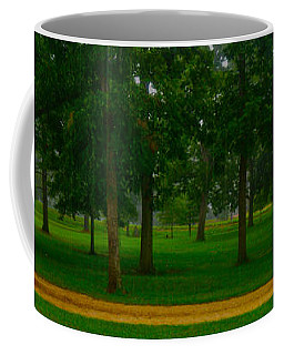 Coffee Mug featuring the photograph Home Circle II by Lanita Williams
