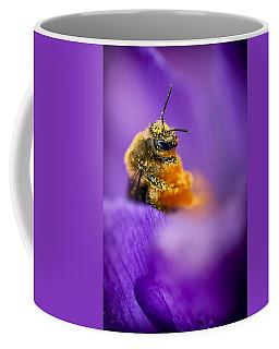 Honeybee Pollinating Crocus Flower Coffee Mug