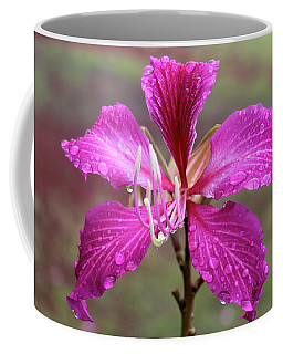 Hong Kong Orchid Tree Flower Coffee Mug by Venetia Featherstone-Witty