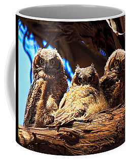 Coffee Mug featuring the photograph Hoo Are You by Beth Sargent