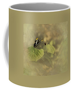 Hop On My Back My Lady And We Will Fly Far Far Away Coffee Mug
