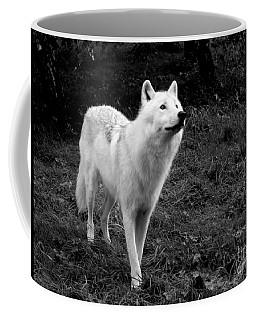 Coffee Mug featuring the photograph Hopeful by Vicki Spindler