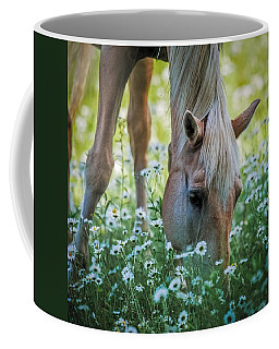 Horse And Daisies Coffee Mug by Paul Freidlund