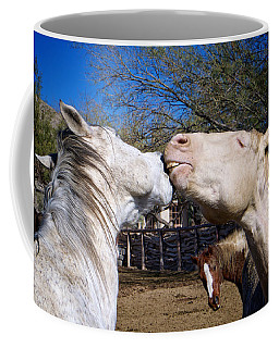 Coffee Mug featuring the photograph Horse Emotion by Mary Lee Dereske
