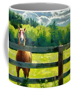 Horse In The Field Coffee Mug by Jeff Kolker