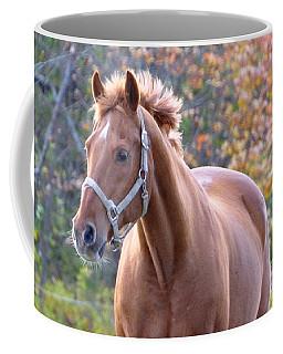 Horse Muscle Coffee Mug by Glenn Gordon