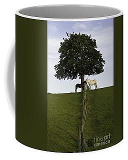 Horse Whisperers   Coffee Mug