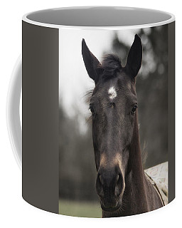 Horse With Gentle Eyes Coffee Mug