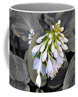 Hosta Ready To Bloom Coffee Mug