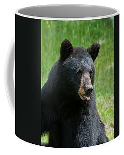 Hot Day In Bear Country Coffee Mug
