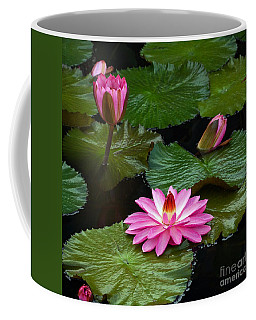 Hot Pink And Green Tropical Waterlilies Coffee Mug