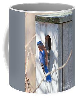 House Hunting Coffee Mug by Kerri Farley