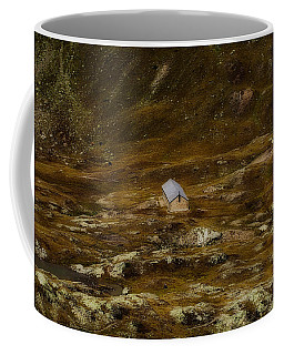 House In The Valley Coffee Mug