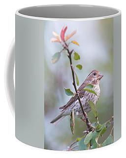 House Sparrow In The Apple Tree Coffee Mug