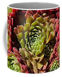 Houseleek Group Coffee Mug