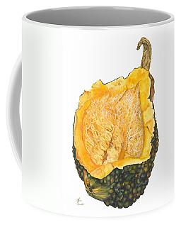 Hubbard Squash  Coffee Mug
