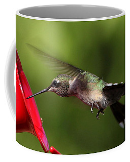 Look Hummingbird Eyelashes Coffee Mug