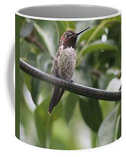 Hummer On A Wire Coffee Mug