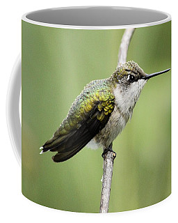 Hummingbird 3 Coffee Mug