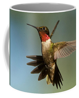 Hummingbird Beauty Coffee Mug
