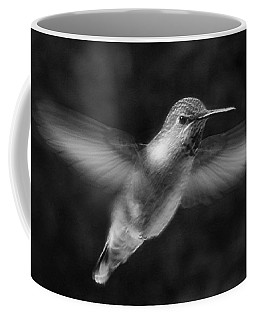 Hummingbird Coffee Mug by Ben and Raisa Gertsberg