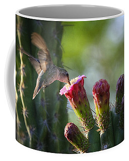 Hummingbird Breakfast Southwest Style  Coffee Mug