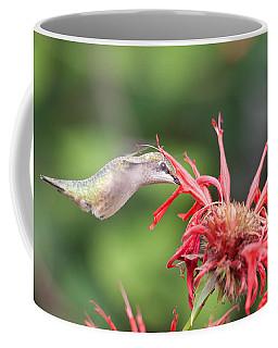 Hummingbird Defying Gravity Coffee Mug