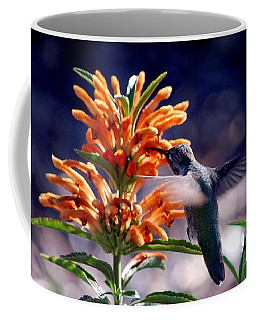 Hummingbird Delight Coffee Mug by AJ  Schibig