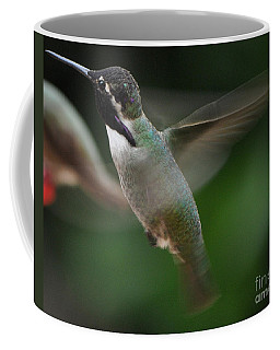 Coffee Mug featuring the photograph Hummingbird Male Anna In Flight Over Perch by Jay Milo