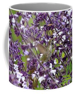 Hummingbird Flowers Coffee Mug