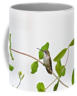 Hummingbird Hanging Out On The Honeysuckle Coffee Mug