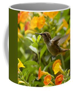 Hummingbird Looking For Food Coffee Mug by Heiko Koehrer-Wagner