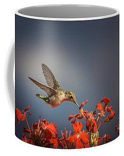 Hummingbird Or My Summer Visitor Coffee Mug