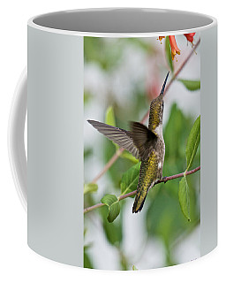 Hummingbird Reaching For The Blossoms Coffee Mug