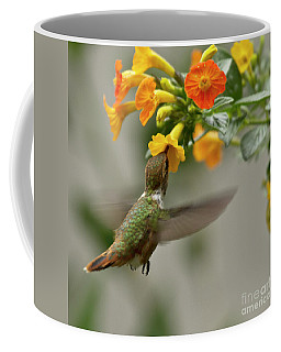 Hummingbird Sips Nectar Coffee Mug