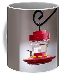 Hummingbird Tongue Coffee Mug
