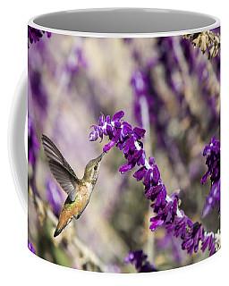 Coffee Mug featuring the photograph Hummingbird Collecting Nectar by David Millenheft