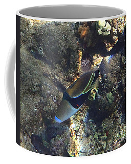 Humuhumunukunukuapua'a's Song Coffee Mug