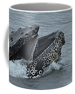 Coffee Mug featuring the photograph Humpback Whale  Lunge Feeding 2013 In Monterey Bay by California Views Mr Pat Hathaway Archives