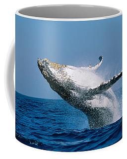 Humpback Whale Megaptera Novaeangliae Coffee Mug