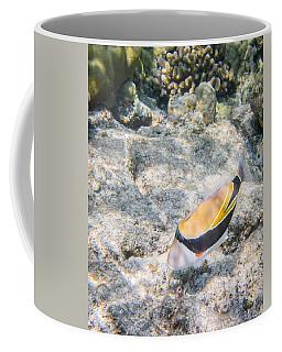 Humuhumunukunukuapua'a Coffee Mug