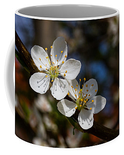 Hungry For Sun Coffee Mug